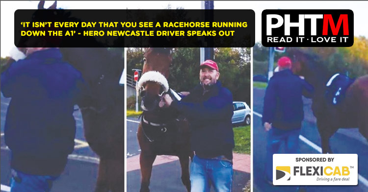 'IT ISN'T EVERY DAY THAT YOU SEE A RACEHORSE RUNNING DOWN THE A1' - HERO NEWCASTLE DRIVER SPEAKS OUT