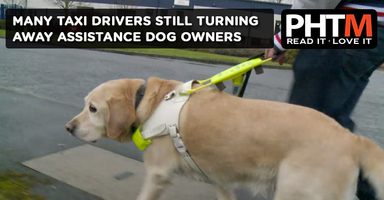 MANY TAXI DRIVERS STILL TURNING AWAY ASSISTANCE DOG OWNERS