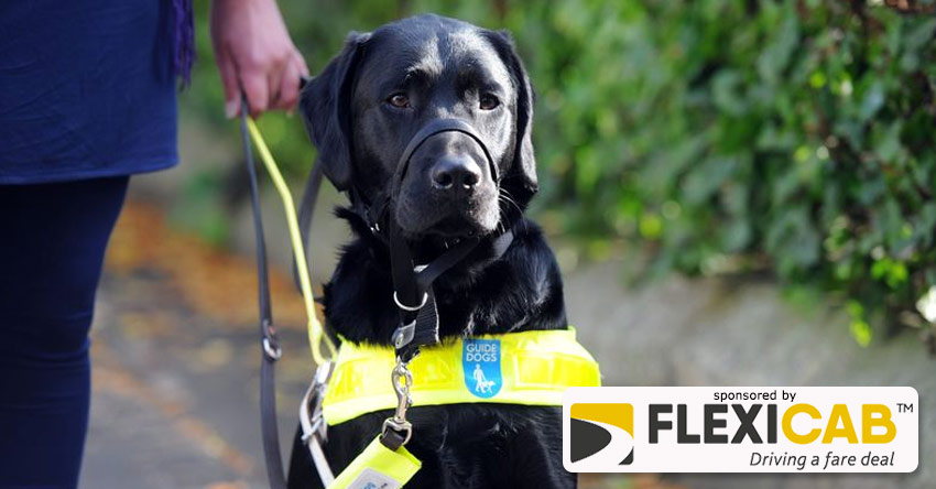 TAXI DRIVER SUSPENDED OVER HIS TREATMENT OF VULNERABLE PASSENGER WITH GUIDE DOG