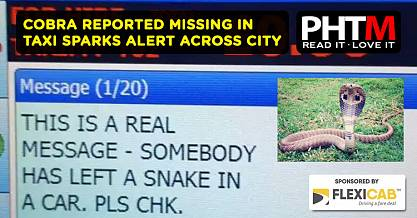 COBRA REPORTED MISSING IN SUNDERLAND TAXI SPARKS ALERT ACROSS CITY