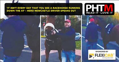 IT ISNT EVERY DAY THAT YOU SEE A RACEHORSE RUNNING DOWN THE A1 HERO NEWCASTLE DRIVER SPEAKS OUT
